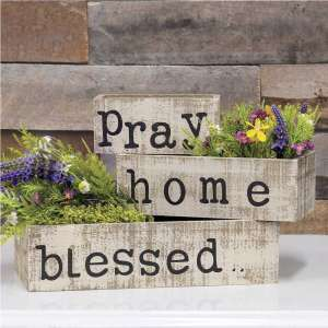 Pray Home Blessed Box Set #35144