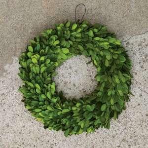 Preserved Boxwood Wreath #F1705105
