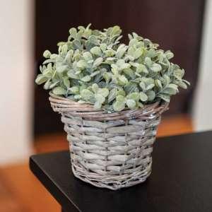 Gray Willow Basket #bb3a136xs